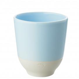 color lab tea cup